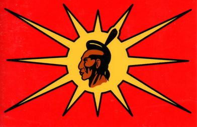 Mohawk_Warrior_Society_flag